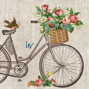 Papierowe Serwetki Robin On Bike