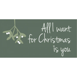 Magnes ALL I WANT FOR CHRISTMAS IS YOU Ib Laursen